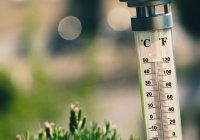Синоптики оценили влияние грядущей жары на эпидемию COVID-19