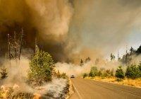 Названы самые пожароопасные российские регионы