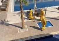 В Египте назвали сроки возвращения иностранных туристов