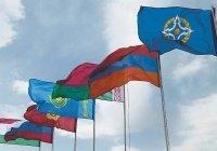 ОДКБ призвала Европу законодательно застраховаться от возрождения нацизма