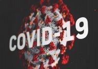 Ученые нашли порядка 200 мутаций коронавируса