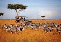 Африке хотят выделить $10 млрд на развитие туризма