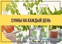 Следуем Сунне: 6 правил питья воды