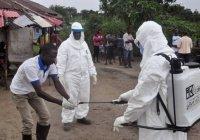 ВОЗ: 190 тысяч человек могут погибнуть в Африке из-за коронавируса