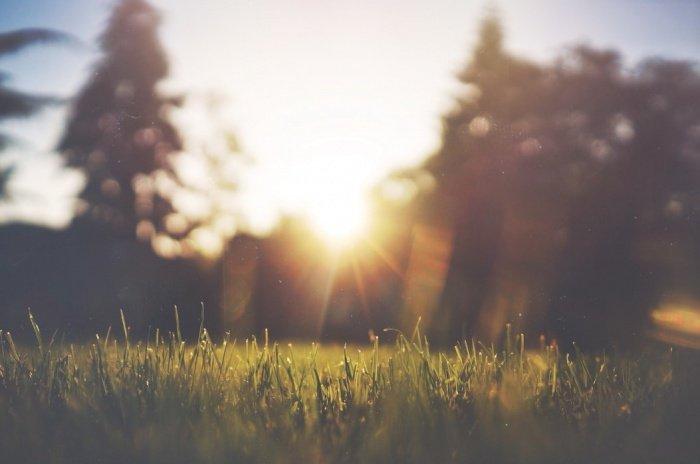 Низкий уровень влажности и солнце способствуют разрушению вируса