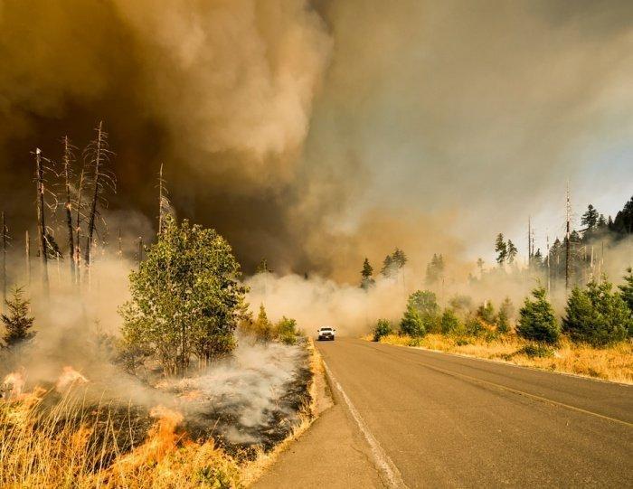 В российских регионах, наиболее подверженных горимости, больше чем на 300 человек повышено число дознавателей МЧС для расследования причин подобных пожаров