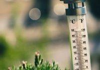 Синоптик поведал о температурных волнах в мае