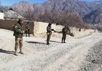 Пограничники Таджикистана и Киргизии устроили перестрелку