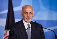 Президент Афганистана возобновил освобождение талибов из тюрем