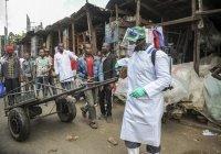 В Африке число заразившихся коронавирусом перевалило за 111 тысяч