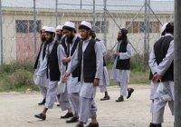 Кабул заявил об освобождении из тюрем более 900 талибов