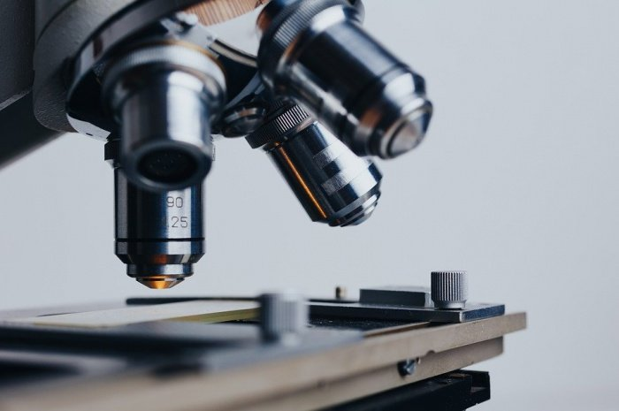 В настоящее время поиск вакцины ведут десятки научных лабораторий по всему миру