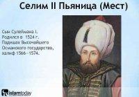 """""""Селим-пьяница!"""": недостойные прозвища и клевета на султанов Османской империи"""