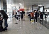 В Турции объявили о возобновлении внутреннего авиасообщения