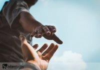 Адам, Юнус, Мухаммад: 3 ценных урока из жизни известных пророков