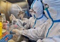 Вакцину от коронавируса испытают на российских военнослужащих