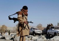 ООН: «Талибан» продолжает поддерживать связи с «Аль-Каидой»