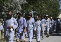 «Талибан» заявил, что освобожденные властями Афганистана – не талибы