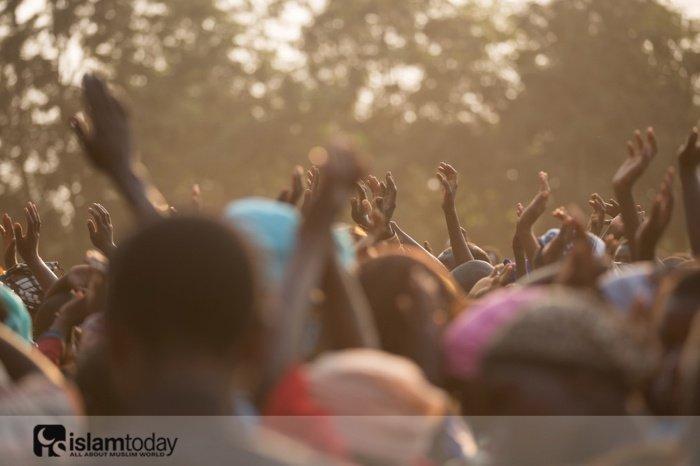Африканское наследие. (Источник фото: unsplash.com)
