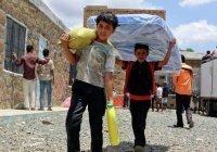 Россия окажет Йемену помощь на $4 млн
