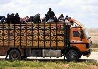 Россия вывезла из лагеря Рукбан очередную группу беженцев