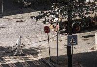 Оценена эффективность дезинфекции улиц во время пандемии