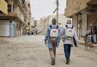 В Сирии город изолировали из-за коронавируса