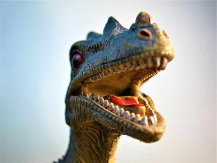 Исследователям хватило 3 фрагментов черепа, чтобы разработать трехмерную компьютерную реконструкцию динозавра