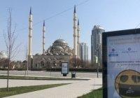На Северном Кавказе начали снимать ограничения, связанные с коронавирусом