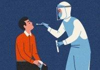 Обнаружен период максимальной заразности коронавируса
