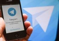 В МВД рассказали, что мешает искать экстремистов в Telegram