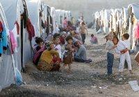 В ООН заявили о росте числа беженцев, нуждающихся в гуманитарной помощи