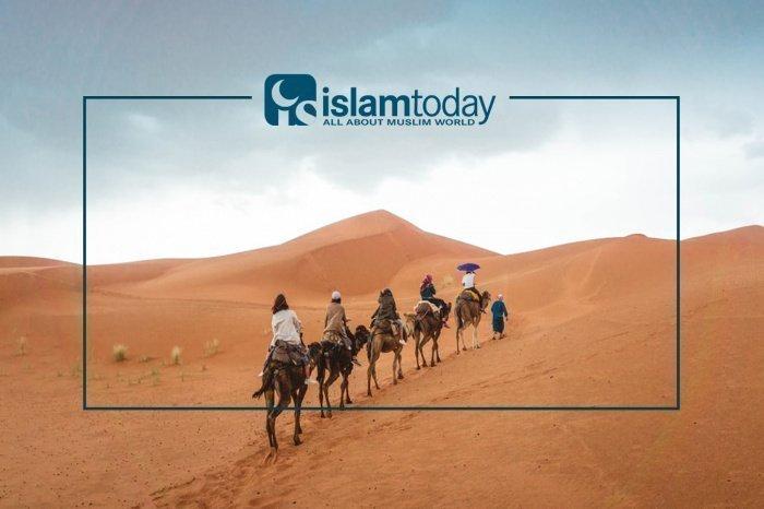 Чьи мы мухаджиры сегодня? (Источник фото: unsplash.com)