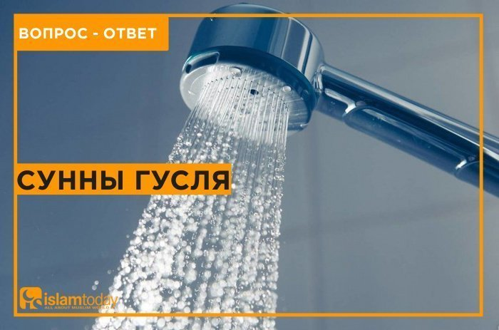 Сунны гусля. (Источник фото: yandex.ru)