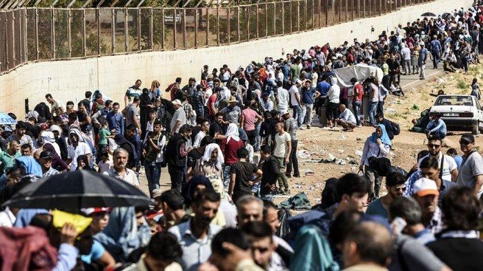 Власти Турции назвали число мигрантов в стране.