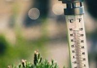 Спрогнозированы температурные аномалии в июне