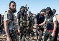 США назвали число боевиков ИГИЛ в Сирии, Ираке и Афганистане