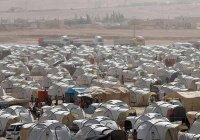 США согласились выпустить беженцев из лагеря «Рукбан» в обмен на помощь для боевиков