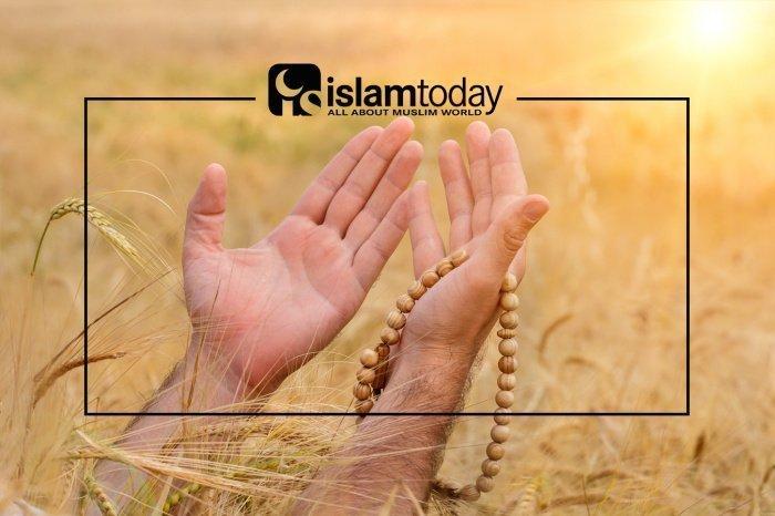 """Значение выражения """"Аллаху Акбар"""". (Источник фото: shutterstock.com)"""