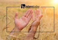 """""""Аллаху Акбар"""": боевой клич или прославление Всевышнего?"""