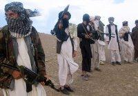 «Талибан» опроверг публикацию NYT о связях с Россией