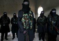 АТЦ СНГ: террористические группировки намерены распространять коронавирус