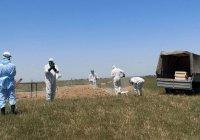 В Казахстане умерших от коронавируса разрешили хоронить на обычных кладбищах
