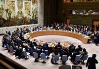 Совбез ООН принял резолюцию о прекращении огня во всем мире