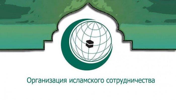 Потенциал сотрудничества России и ОИС
