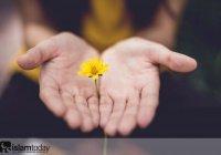 10 аятов и хадисов о вежливости