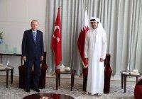 Эрдоган совершил первую с начала пандемии зарубежную поездку