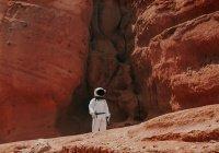 Обнаружено, кого люди могут встретить на Марсе