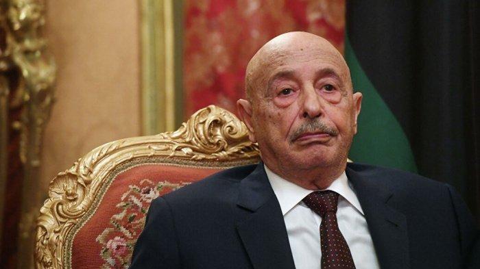 Салех отметил дружеские отношения России и Ливии.