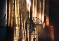 Специалисты дали советы, как спастись от жары